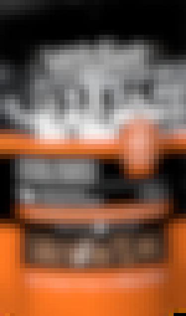 Vetdiet - Tendres délices –  Formule au canard